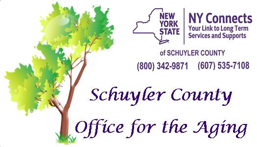 Schuyler OFA and NY Connects